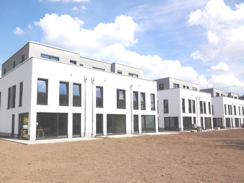grapabau-projekt-hattersheim_0009_DSC02334_0